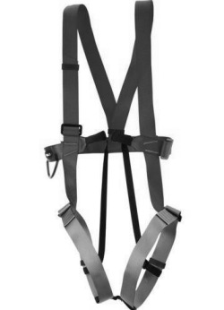 Safety harness Image